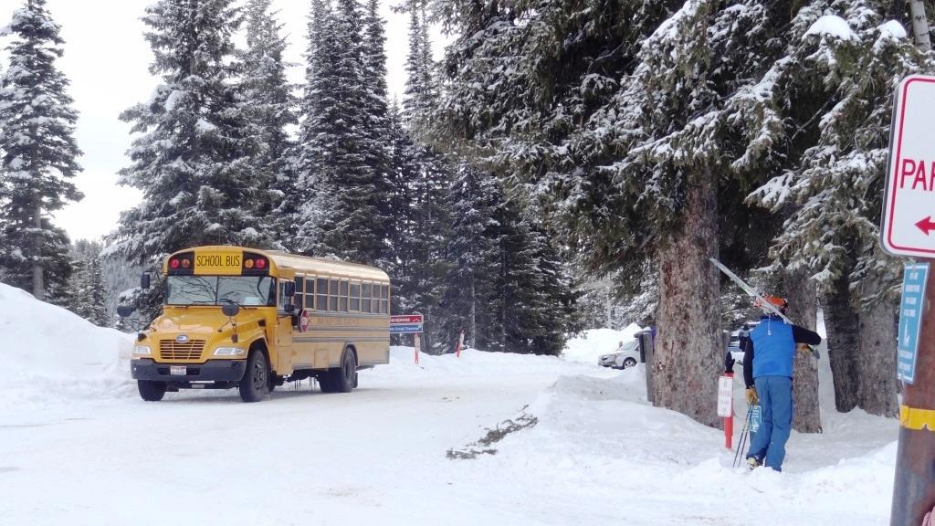 19 school bus