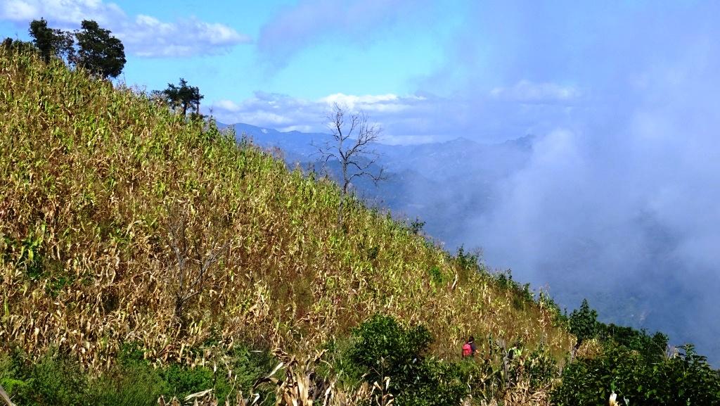 volcan altitlan 12