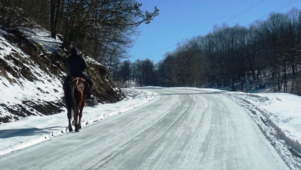 1 Bakuriani - cheval